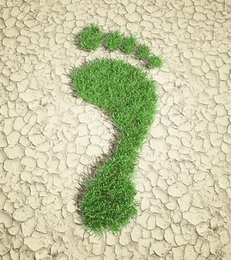 Seguro de Responsabilidad Ambiental para Empresa