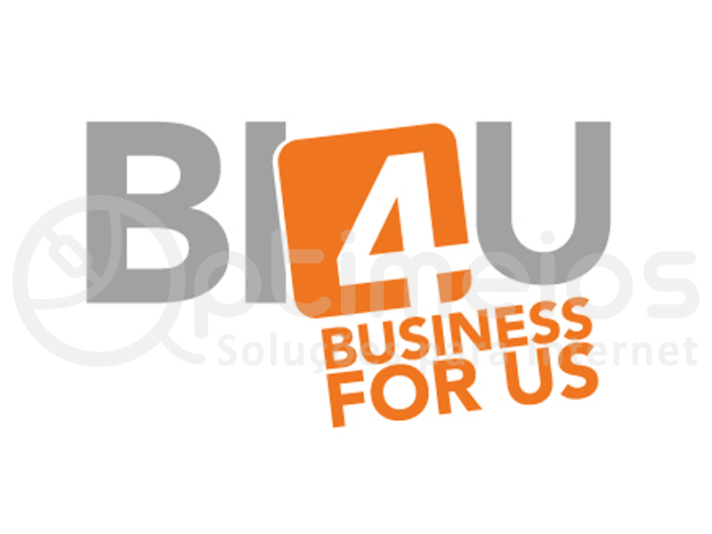 BI4U - Business for us